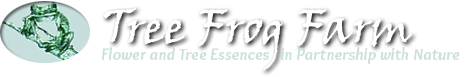 Tree Frog Farm - Flower and Tree Essences in Partnership with Nature