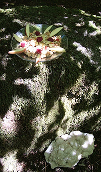 Fairy Rock Offering