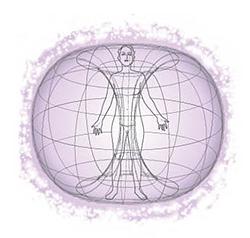 Electromagnetic Field Vitality Logo