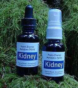 Kidney Organ Energy Meridian Essence Blend