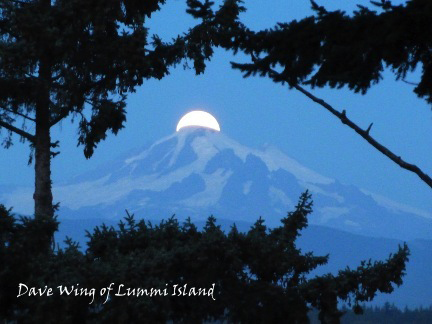 Moon Over Mt. Baker by David Wing