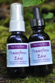 Transform Ease Flower Essence Blend