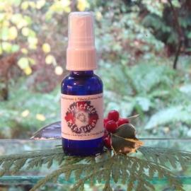 Yuletide Blessings Aromatherapy Mister - 1 oz.