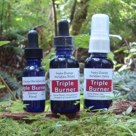Fire Element: Triple Burner Organ Energy Meridian Essence Blend