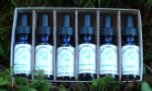 6-Pack of flower and tree essences