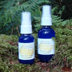 Golden Armor Aromatherapy and Essence Mister - Tree Frog Farm